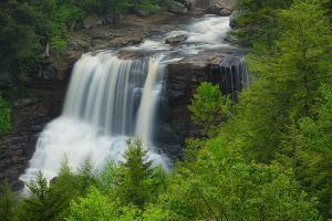 Blackwater Falls May 2010 by LAlight