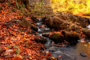 HDR Autumn Rapids by Nebey