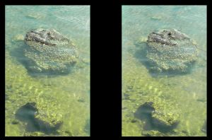 Stereo 3D parallel Low Tide by shawnrl61