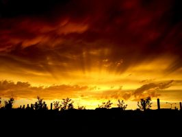 Crazy Colorado Sunset by designKase