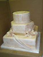 Wedding cake 112 by ninny85310