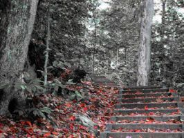 Autumn stairs by charlopunk