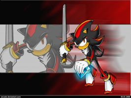 Shadow - Chaos and Sword by ancode