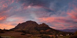 Stellenbosch Autumn by hougaard