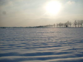 winter 2010 in Poland.. by shetty05
