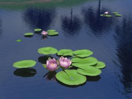 Waterlillies Stock by Casperium