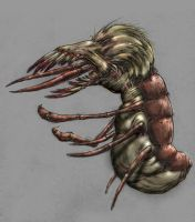 Coloured Antlion by InsidiousTweevle