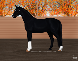 HARPG's Supreme Stallion 2012 - Halter by FamousFox
