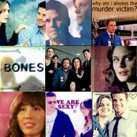 Bones and Booth by JulesLuvsHarry
