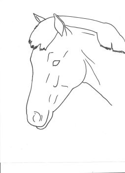 Horse Head by Allicorn