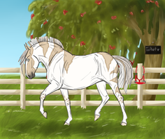 SOS Talbot 2572 by SorrelOrchardStables