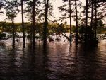 The flooded lake by Ghosk34