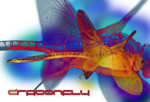 Dragonfly brush by Fufnahad