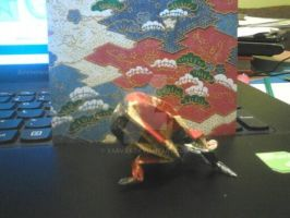 Frog origami by xArvax