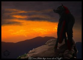 Der Wind by Dalkur