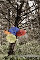 Umbrella Tree by AlexAidonidis