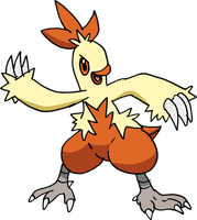 256 - Combusken by Tails19950