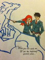Harry and Ginny 4 by DAHalfblood
