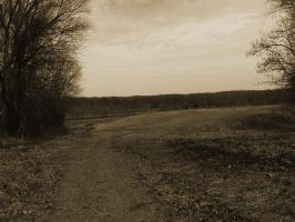 Troubled Path by Amitka