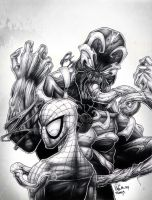 spiderman-NB by Vinz-el-Tabanas