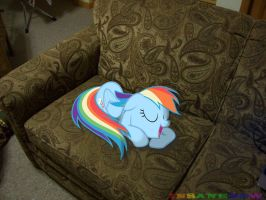 dashie sleeping on my couch by wolfgangthe3rd