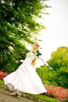 The Swan Princess by Fairie-Tails