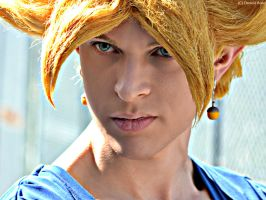The eyes of two super saiyan with fusion power! by Alexcloudsquall