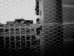 CAGE by Tal-ab