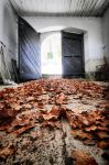 Remnants of autumn by tomsumartin