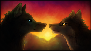 Wolf luv by Featherhaze