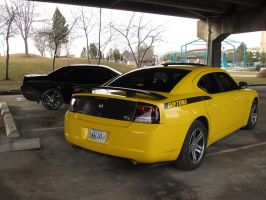 Black and Yellow by KateKannibal
