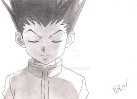 Gon by Florin14k