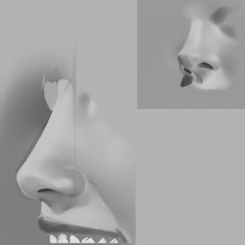 nose study 1 by SuperSaiyan3Scooby