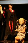 AS'11 Harry and Dobby 02 by Hermy46