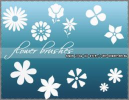 flower brush set by Alterna666