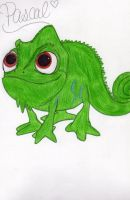 Pascal by WickedLover010