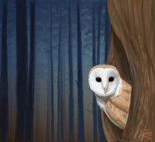 The Forest Has Eyes by CoreyChiev