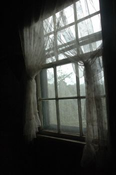 Window With old lace curtains by Elysium56