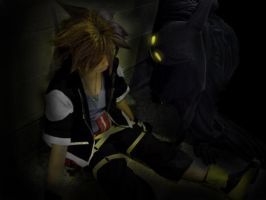 AX09: Heartless and Sora by Taymeho