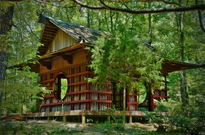 Tea House by NaturalLightImages