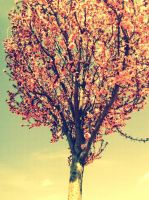 Another pic of the pink tree by Pidon-animal