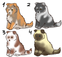 Puppy adoptable 6 by OhMyAdopts