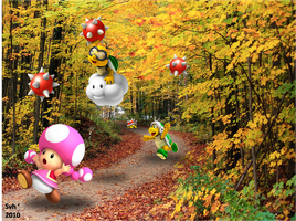 Run Toadette by Sintonio