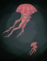 Deep Jellies by CalicoNorth
