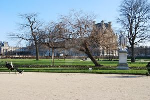 The Musee du Louvre - garden by dysio