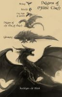 Dragons of Middle Earth by Raikoh-illust