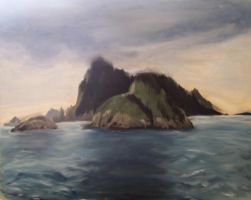 Chiswell Islands by rcoots