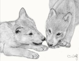.Wolf Cubs - Stick Fight. by White-Wolfen