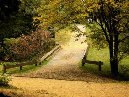 Nature_ autumn path by Aimelle-Stock