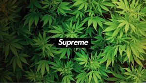 Supreme Weed by MrMoodys